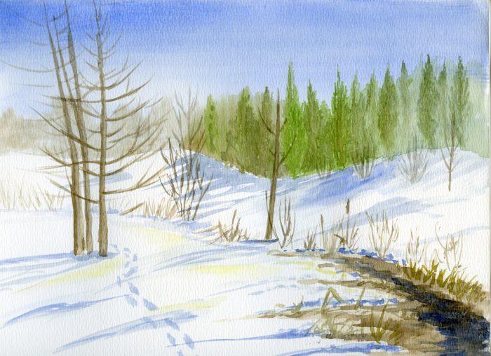 Late Winter's Stream